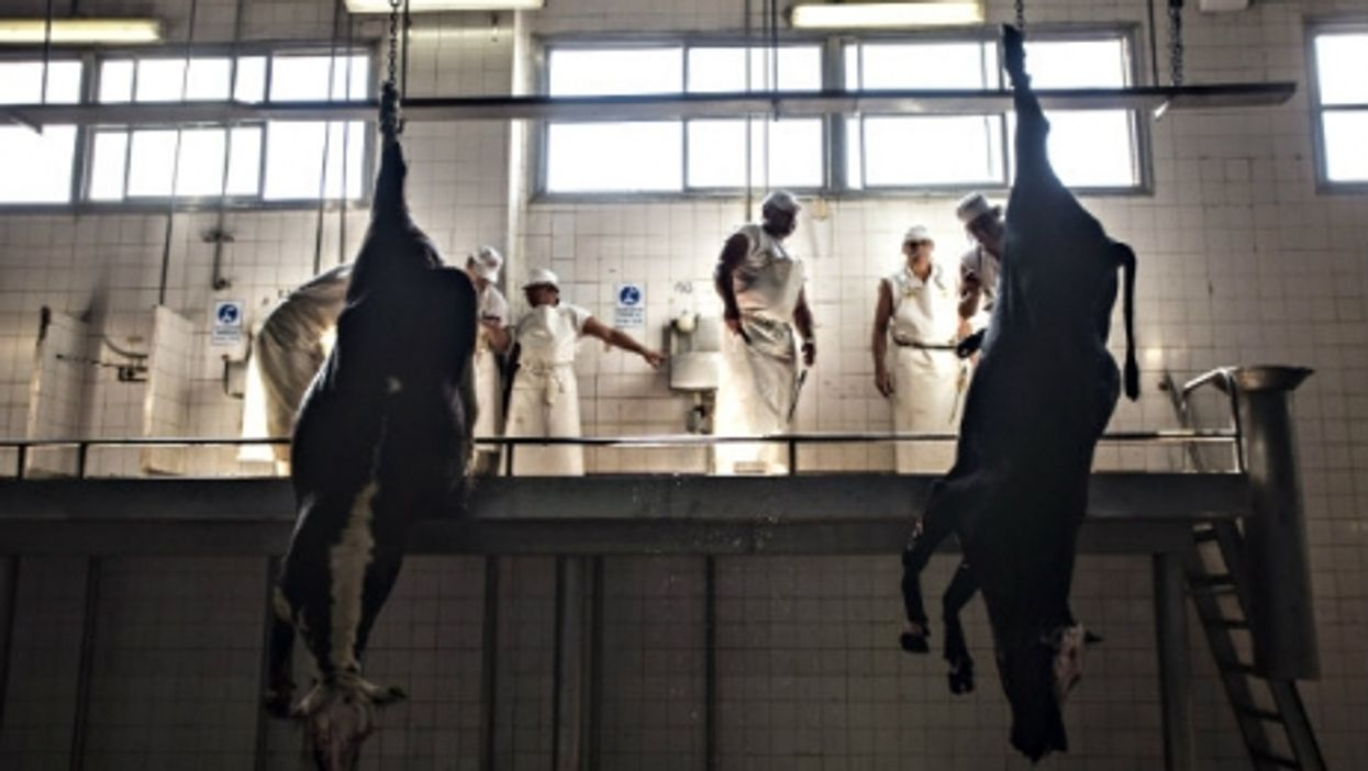 in At the Yaguane Meat Processing Plant Cooperative in Argentina.