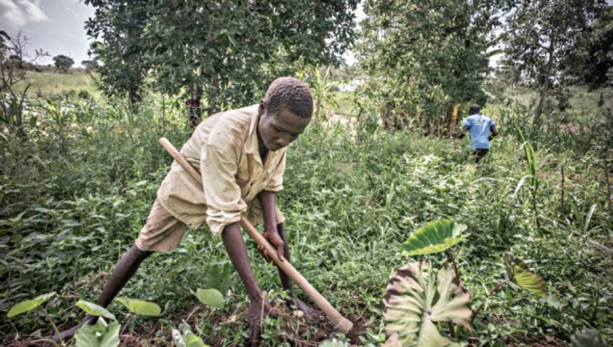 In Uganda, help is needed to replace outdated agriculture methods.