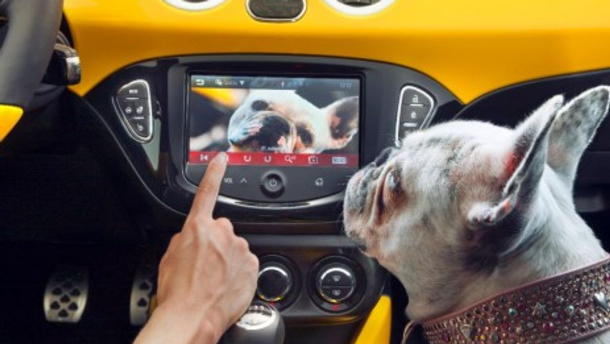 Infotainment in the car: a dog's dinner? (Opel)