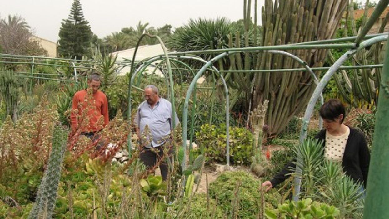 Israelis' character is the fruit of a rugged life in a kibbutz