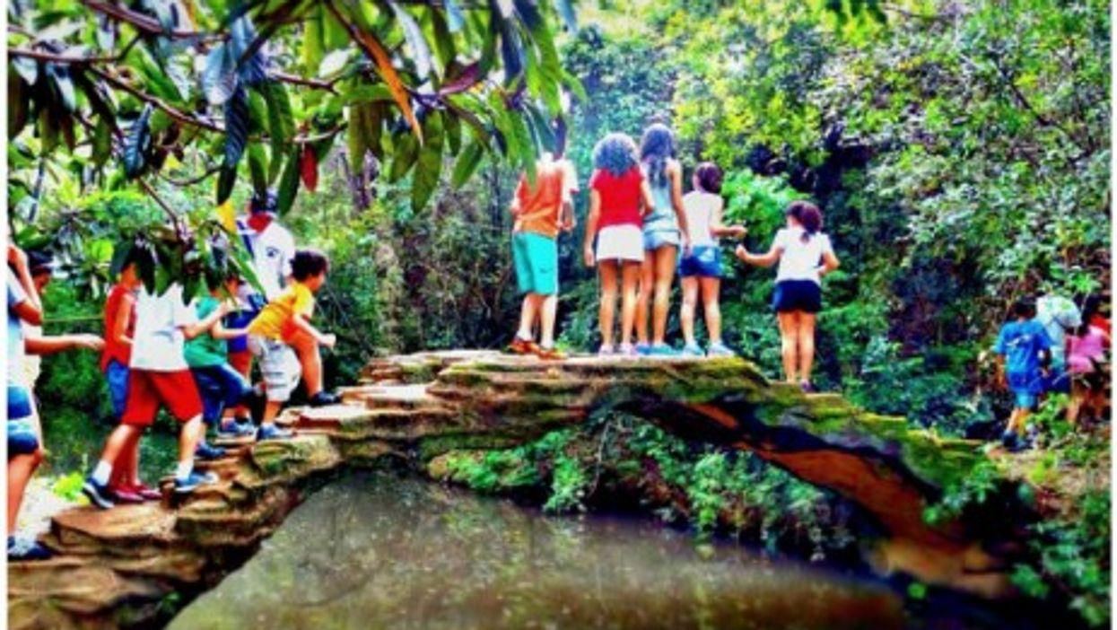 Kids at a digital detox camp near Sao Paulo