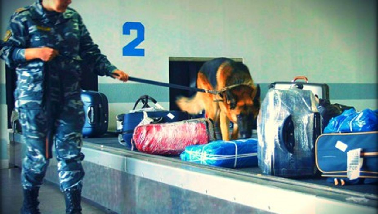luggage has become a national security issue