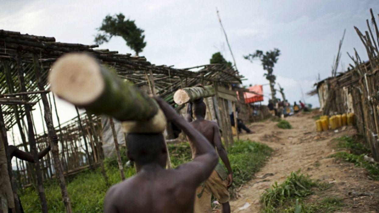 Men carrying tree trunks in North Kivu, DRC