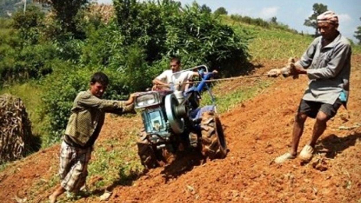 Nepalese farmers plowing their field