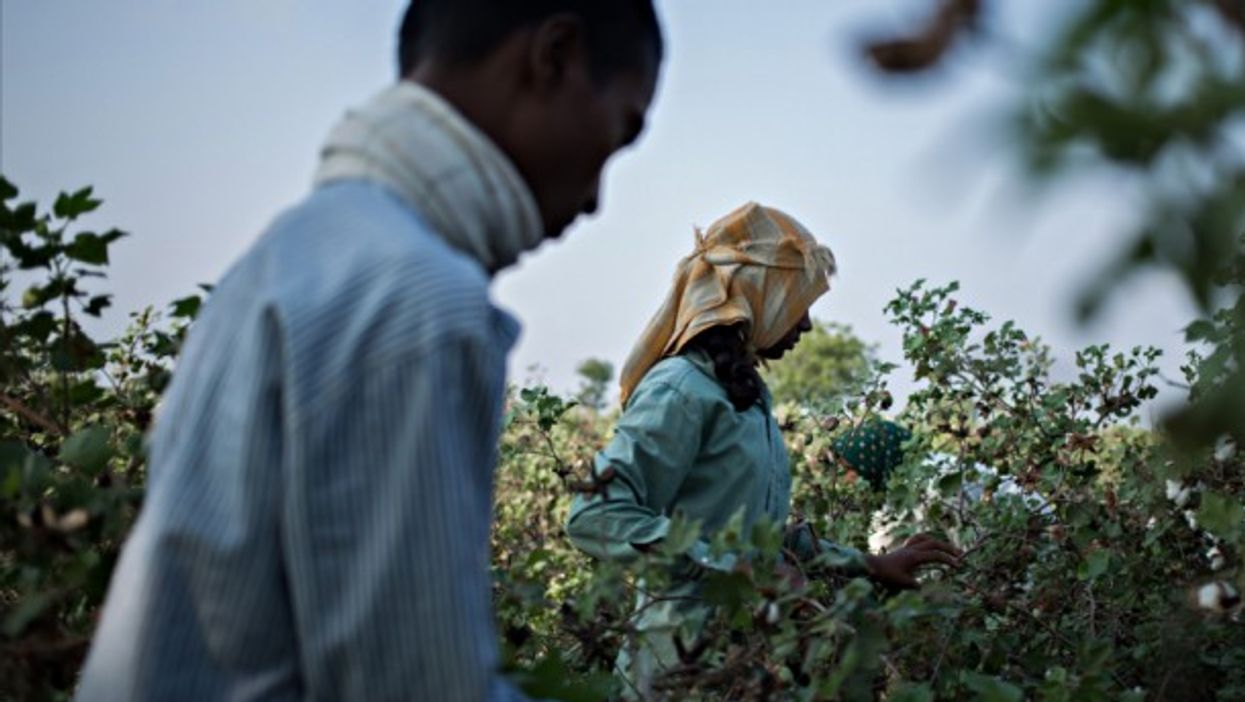 Pesticides are a common form of suicide for struggling farmers in India.