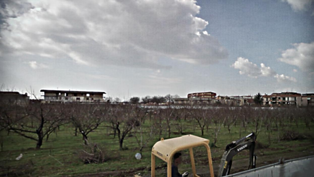 Planting trees in Giugliano