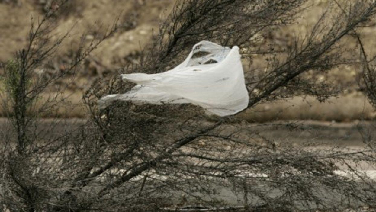 Plastic bags, a global problem