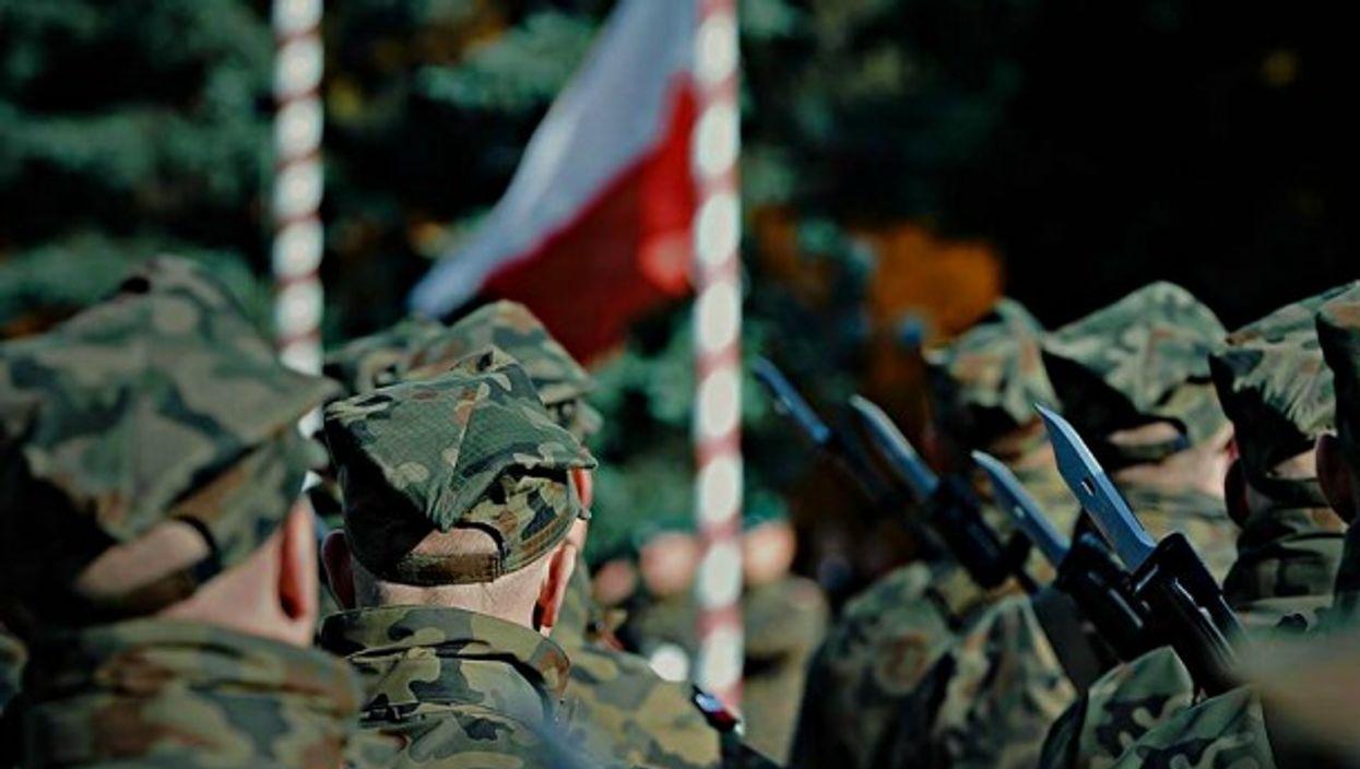 Poland's volunteer WOT militia