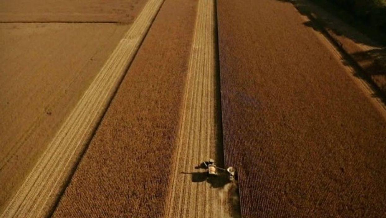 Precision farming in Argentina