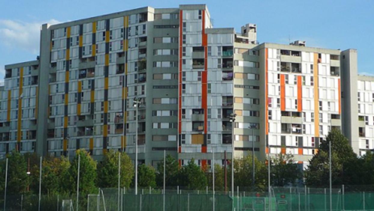 Public housing at Villeneuve de Grenoble