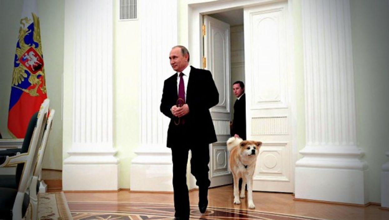 Putin and his Akita guard dog