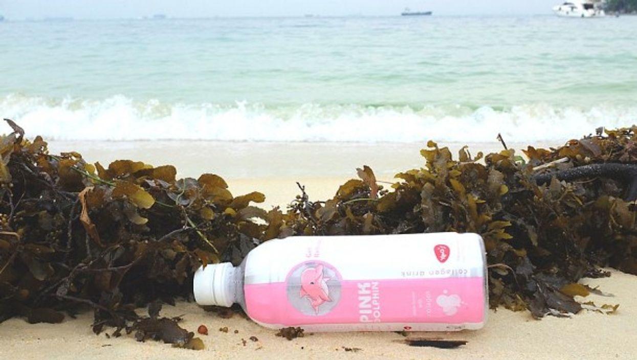 Seaside pink