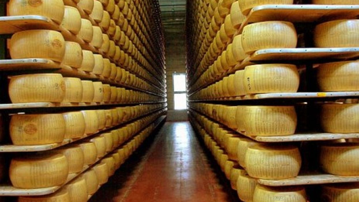 Shelves of Parmesan, Modena
