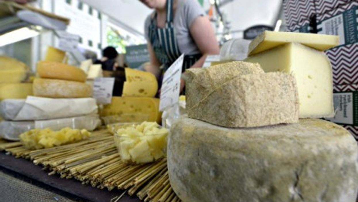 """Slow Food biennial """"Cheese"""" event in Bra, Italy"""