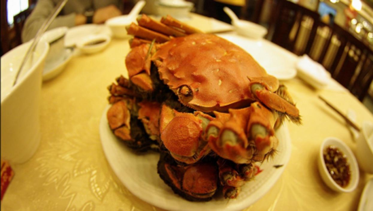 Smitten for mitten crab