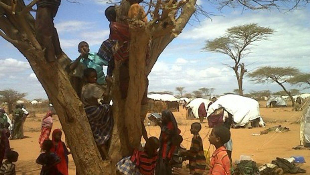 Somali refugees arrive every day in the Dadaab Refugee Camp in eastern Kenya.