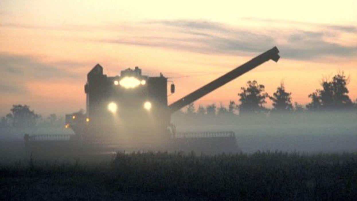 Soybean harvest in Brazil