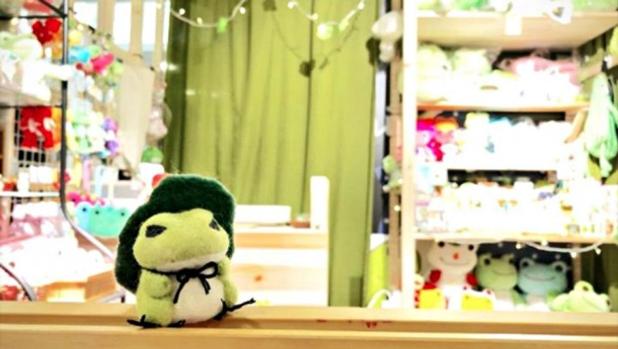 Stuffed Travel Frog