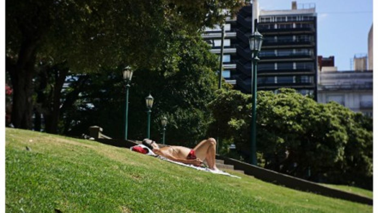 Sunbathing in a Buenos Aires' park