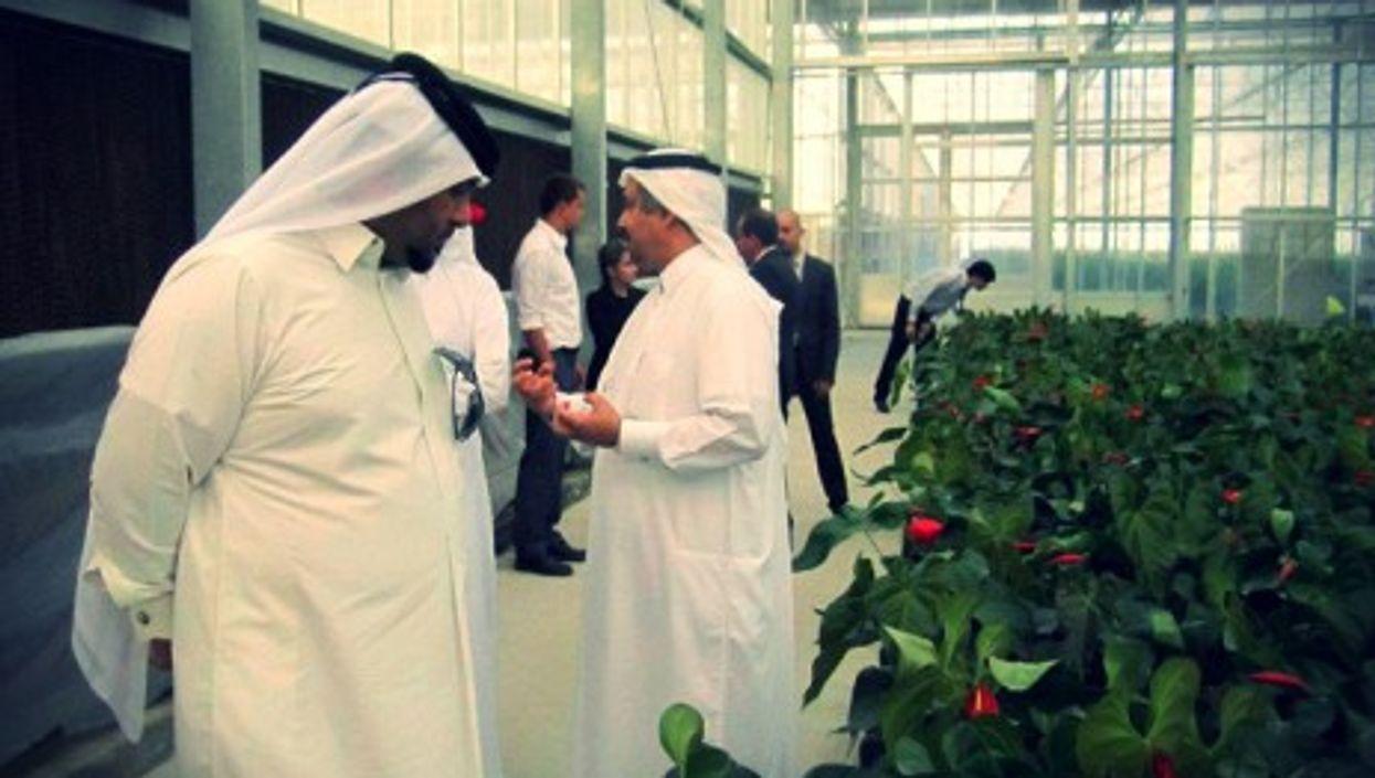 The Roza Hassad greenhouses near Doha, Qatar