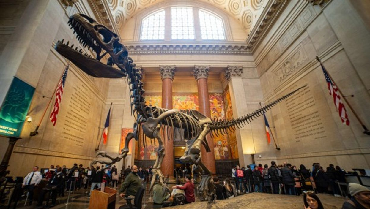The Theodore Roosevelt Rotunda at the American Museum of Natural History
