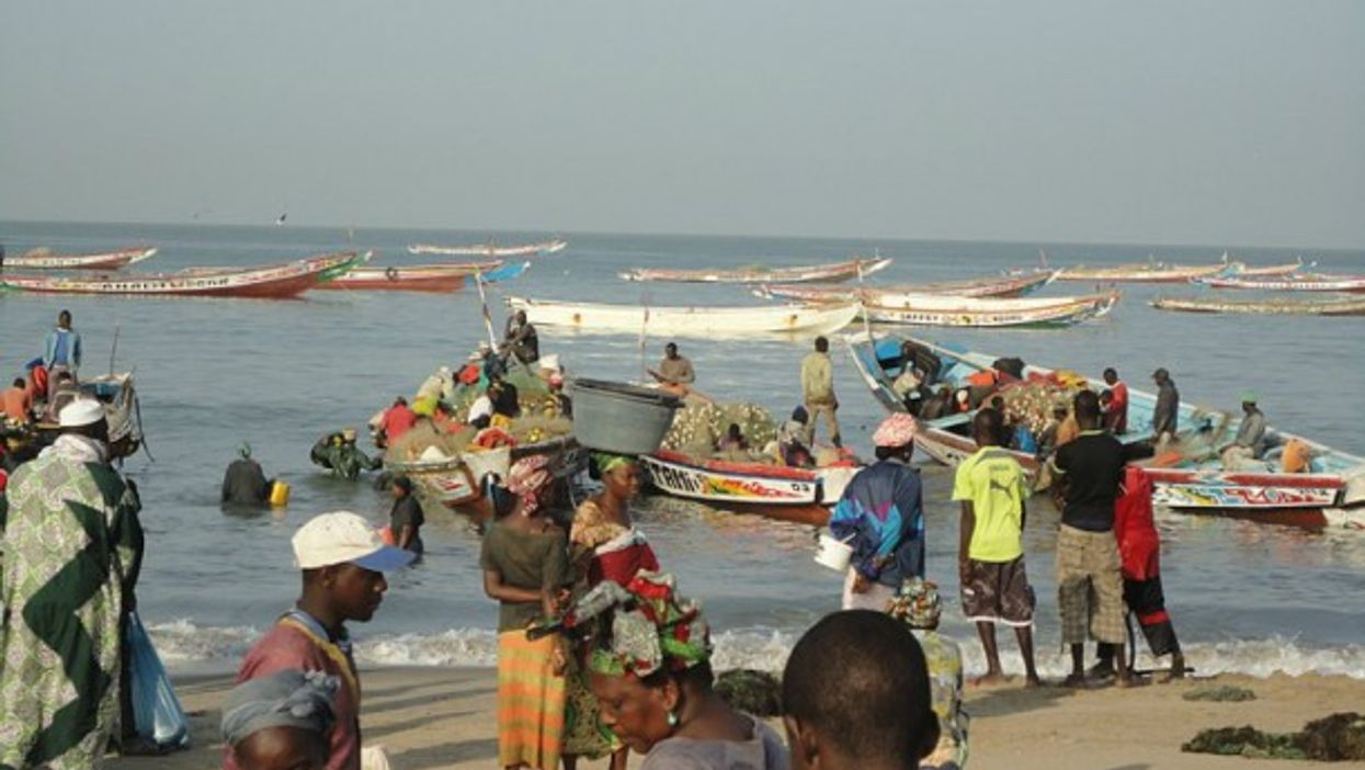 Traders at the fish market in the coast of Gambia