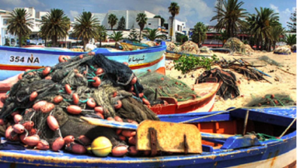 Tunisian economy has been grounded since the Jasmine Revolution (francesco sgroi)