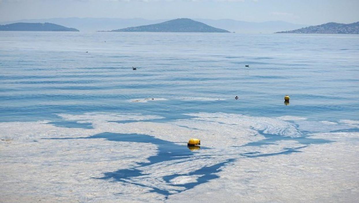 "Turkey's Marmara Sea is facing a scourge of marine mucilage, or ""sea snot"""