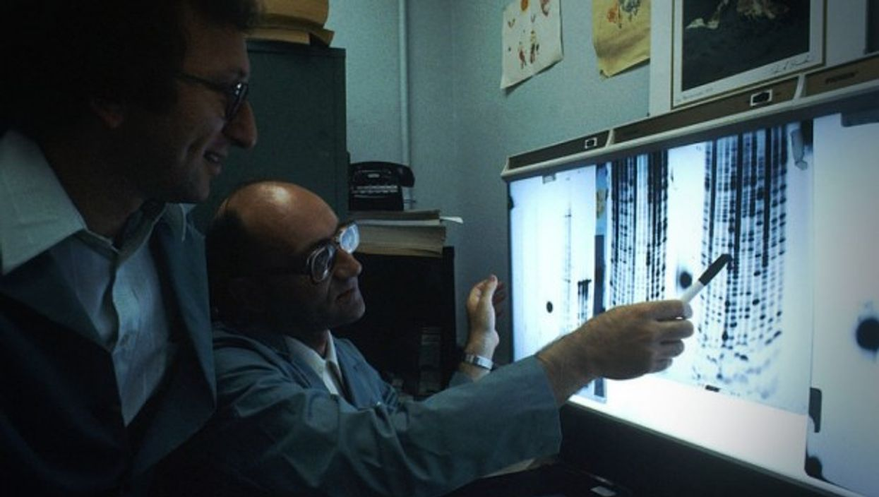 Two scientists reading DNA genetic code