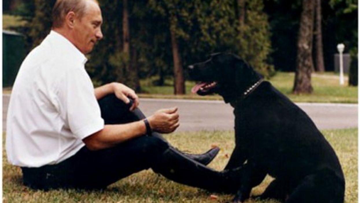 Vladimir Putin and his labrador Koni