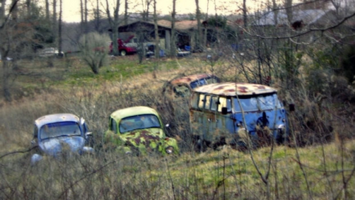 Volkswagens caught in the weeds in Tennessee