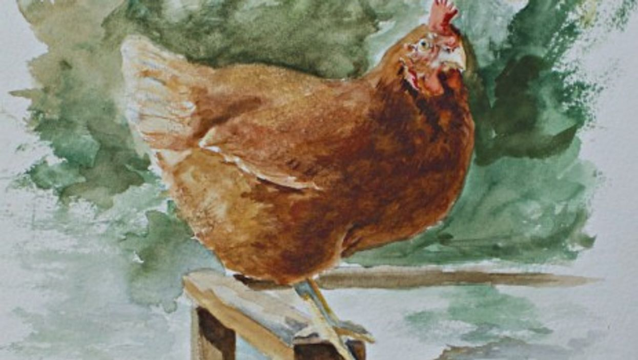 Watercolor by Frank Omier, Emily's husband