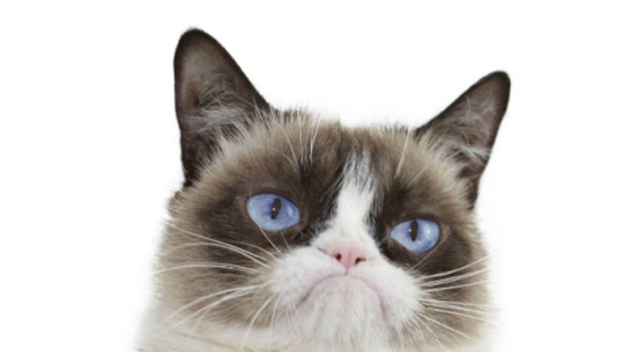 Why so grumpy?