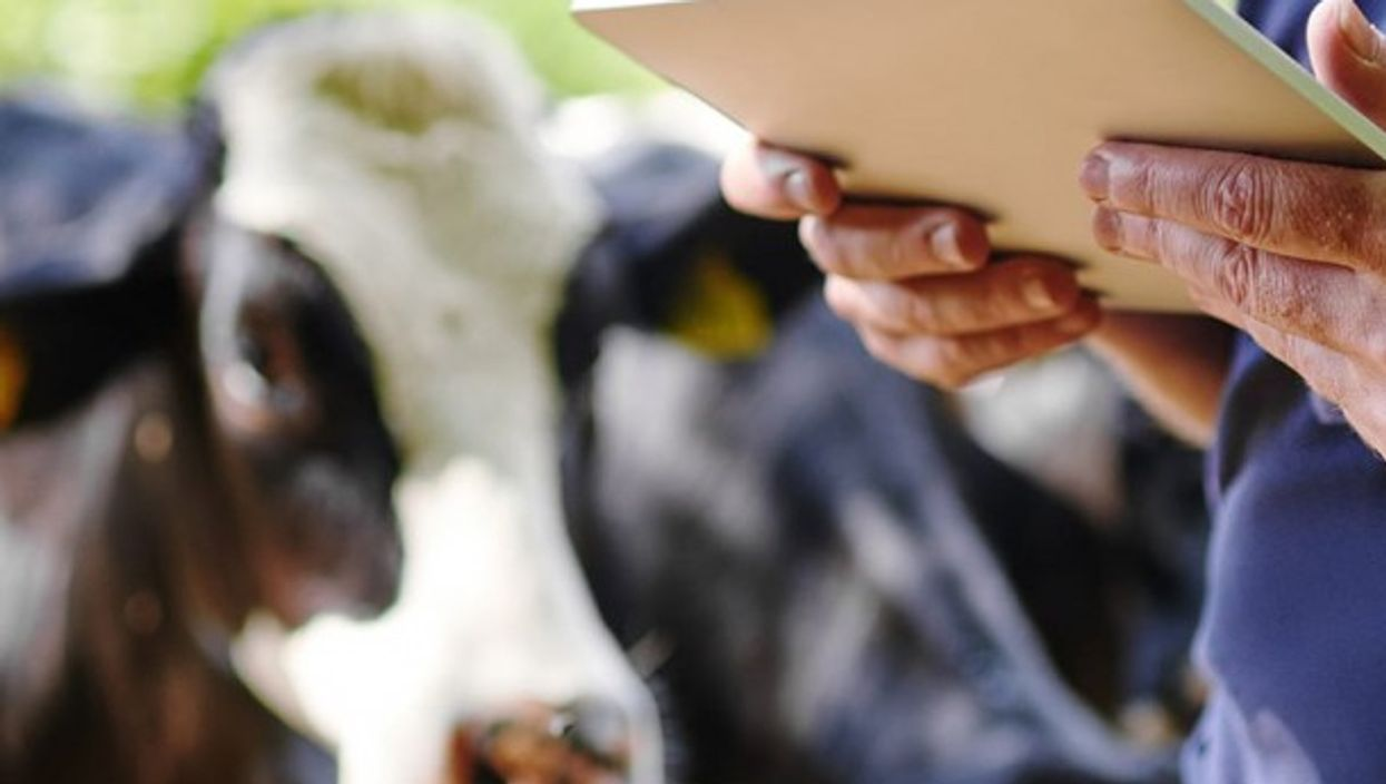 Will adigital technology help to remobilize a generation that had lost interest in agriculture?