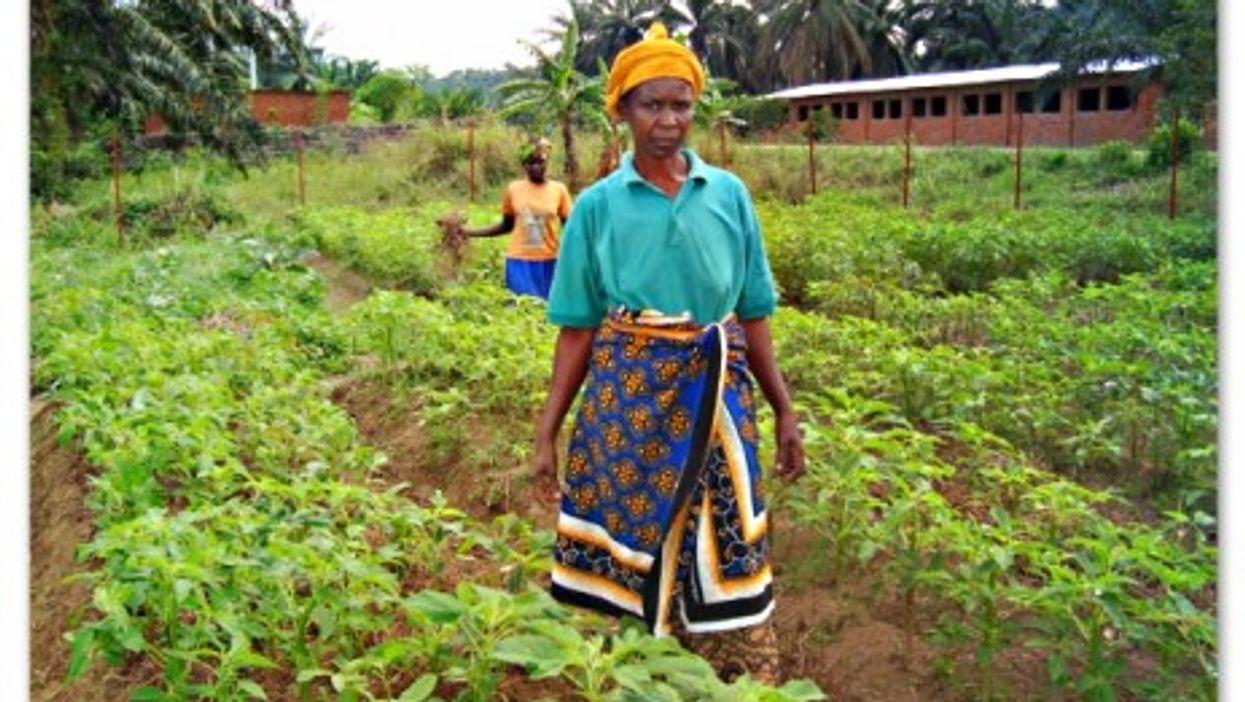 Women farmers in Bitare, Burundi