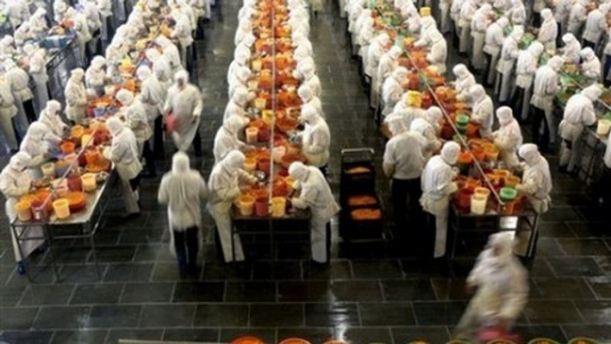 Workers canning tangerines at the Huangyan No 1 Canned Food Factory