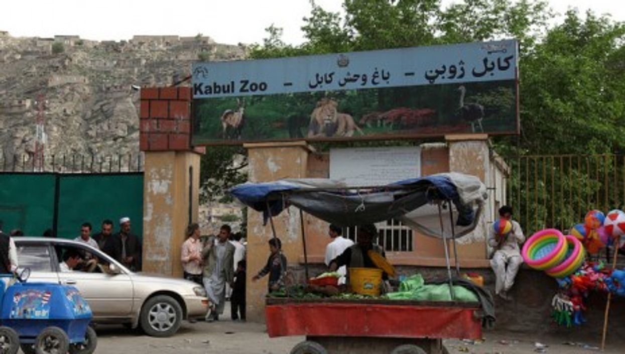 Zabul zoo: a quiet oasis (Jeremy Weate)