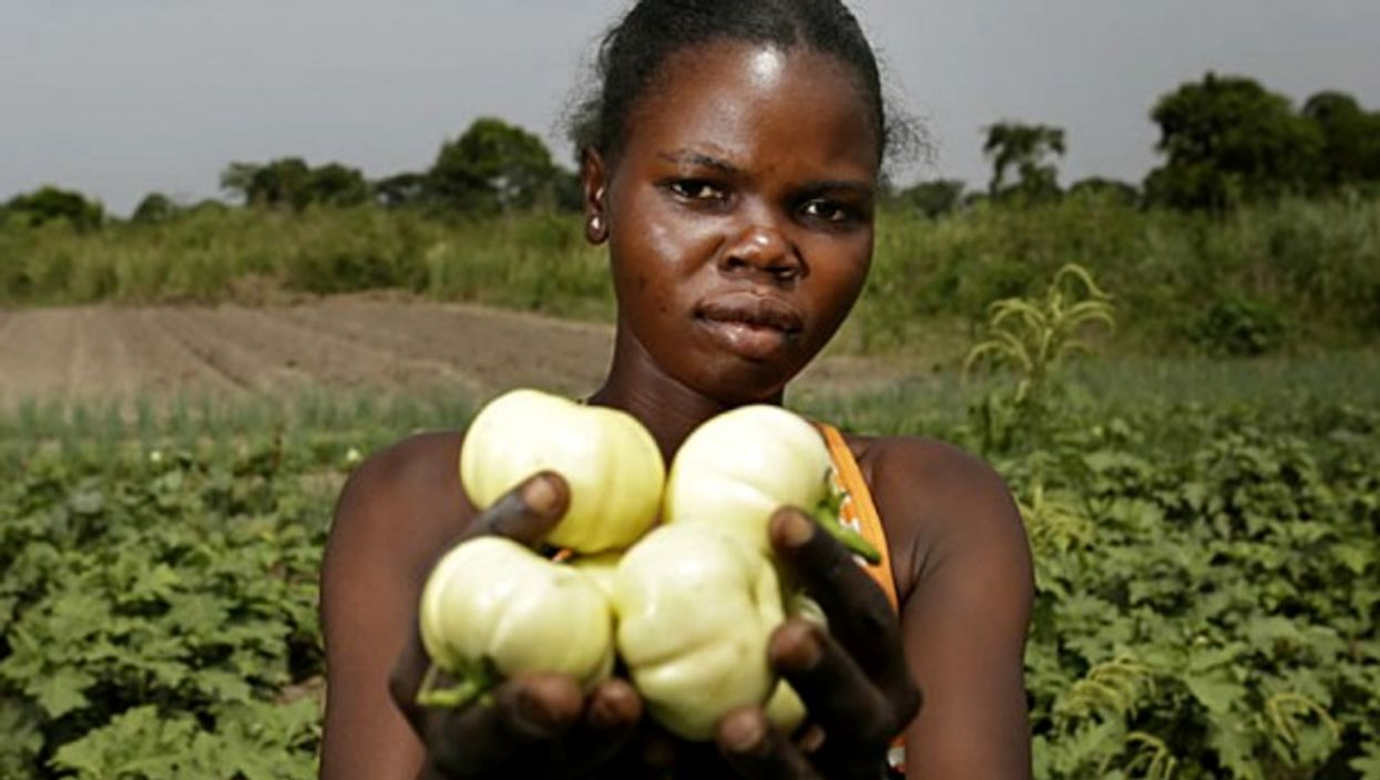 Zimbabwean woman in agriculture